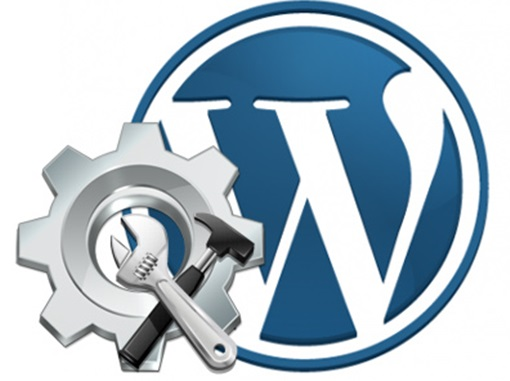 Assistenza Wordpress 1